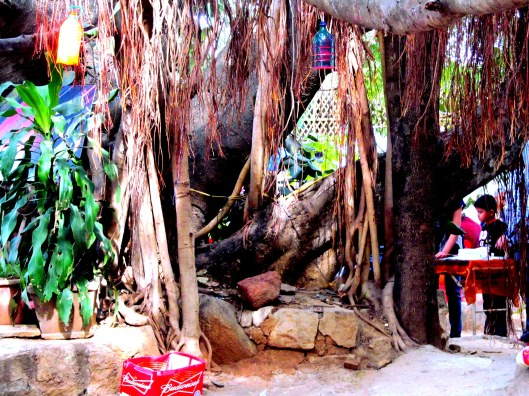 The Huge Banyan